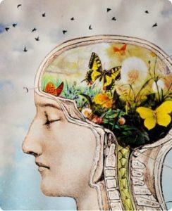 human-brain-natural